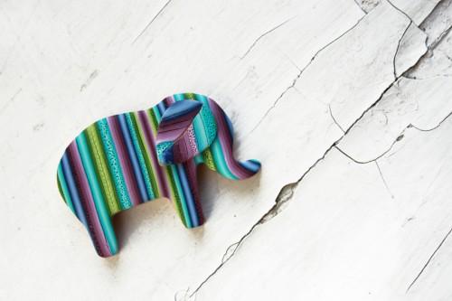 Zilonis, kurš ļoti labprāt rotās Tava mēteļa krādziņu. Deviņi delfīni un viņš ir Tavs.